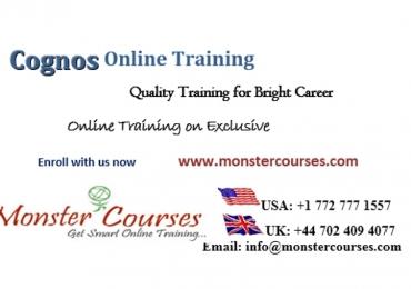 Cognos 11 Training