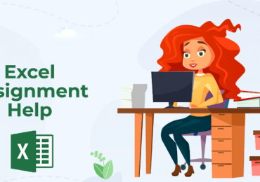 excel assignment help