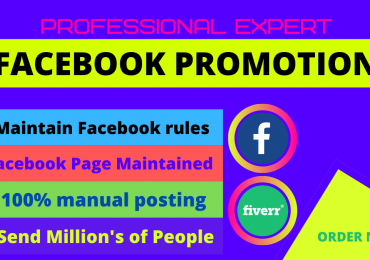 I will be your facebook marketing manager and promotion specialist