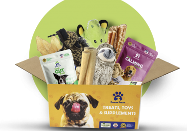 Best Pet Subscription Box USA