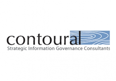 Data Governance Consulting