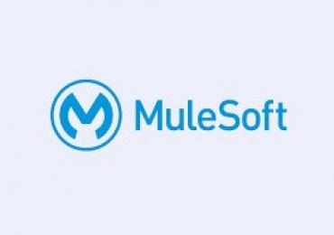 Mule soft online training mule training