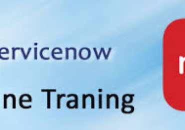 Service Now Online Training